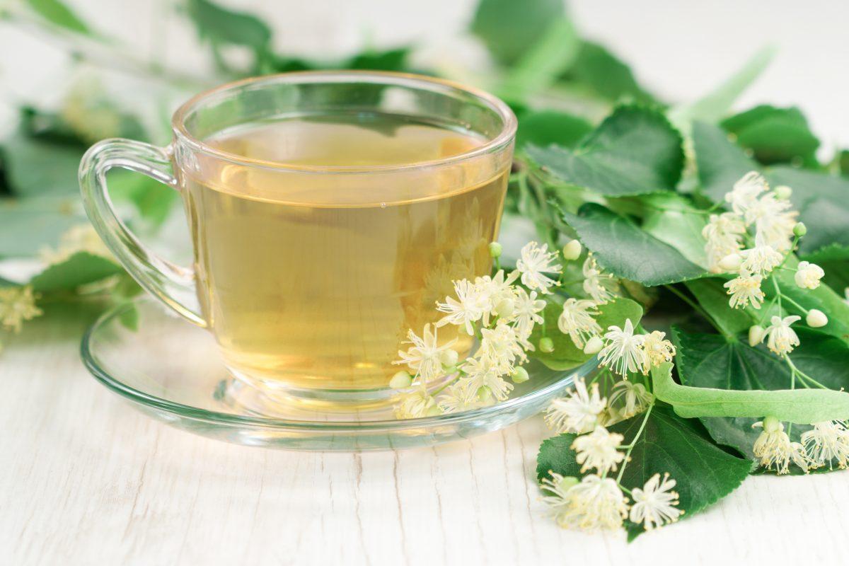 ceaiul de slăbire din plante în timpul alăptării