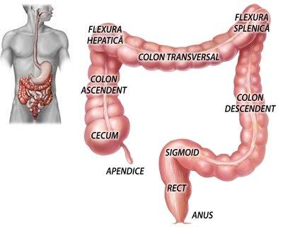 stagnarea durerilor articulare biliare