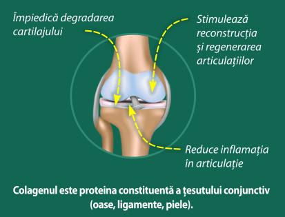 actiunea-colagenului-ah-repair
