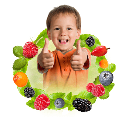 vit-c-fructe-din-padure
