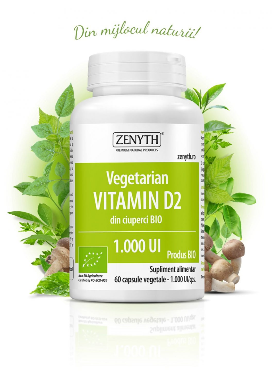 Vegetarian-Vitamin-D2