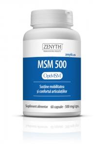 msm500