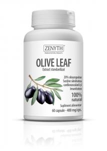 olive-leaf