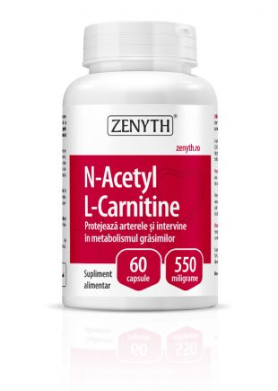 N-Acetyl L-Carnitine