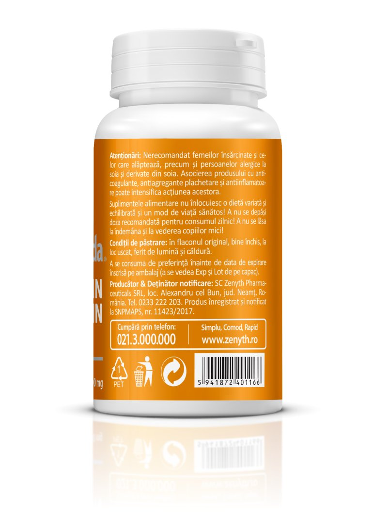 Longvida Brain Curcumin Text 02
